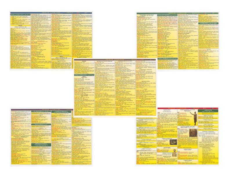 Tabulka Přehled literatury