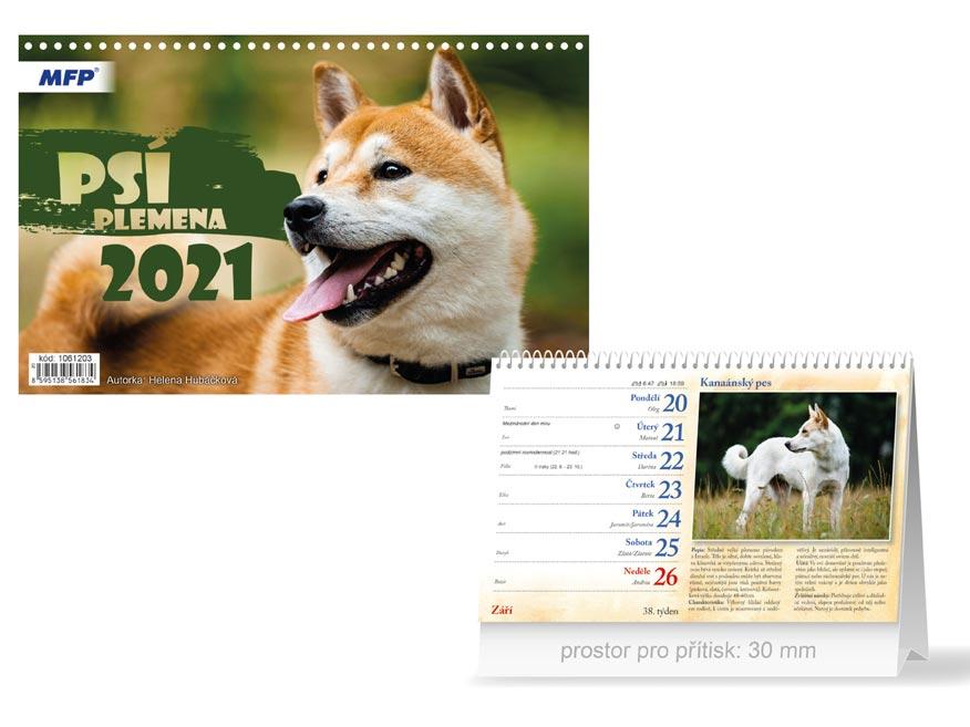 MFP 1061203 kalendář 2021 stolní Psí plemena