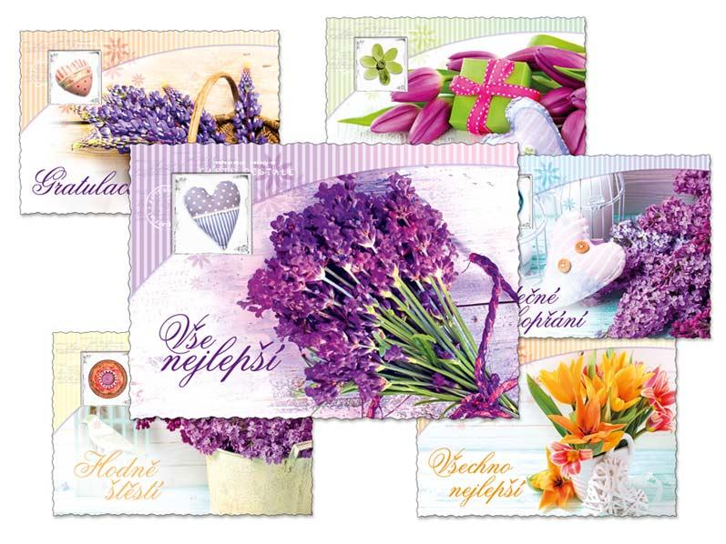 MFP 1230296 pohlednice sr R053 C výsek