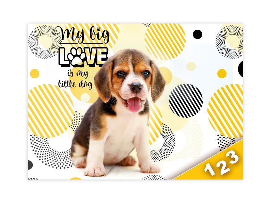 Desky na číslice MFP Pes