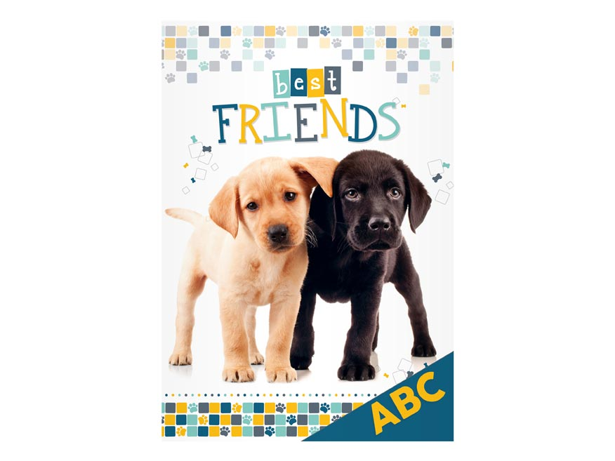 Desky na ABC MFP Pes