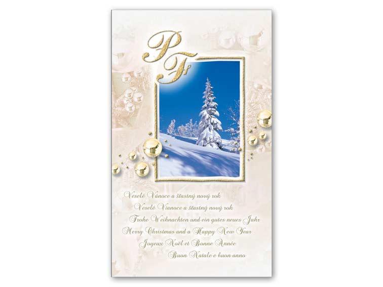 Přání novoroční, PF V24-184 T